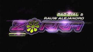 Bad Gyal, Rauw Alejandro – Zorra
